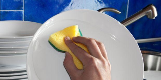 BAHAYA... Spons Cuci Piring Bisa Jadi Sarang Kuman, Begini Cara Mencegahnya!