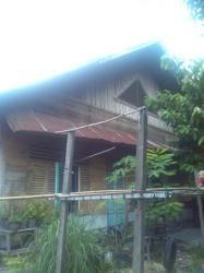 Rumah Tua Suku Melayu Masih Dijumpai di Kawasan Tanjungrhu Pekanbaru