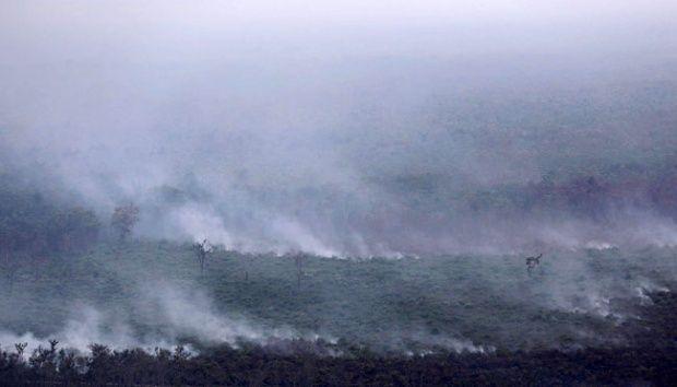 Klaim Rugi akibat Kabut Asap, Perusahaan Malaysia Minta Kompensasi Indonesia