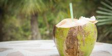 kenapa-air-kelapa-bisa-sembuhkan-keracunan-berikut-alasannya