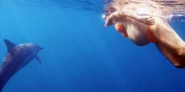 Percaya Bayinya Akan Dapat Bicara dengan Ikan, Wanita Ini Pilih Melahirkan di Bawah Laut Bersama Lumba-lumba