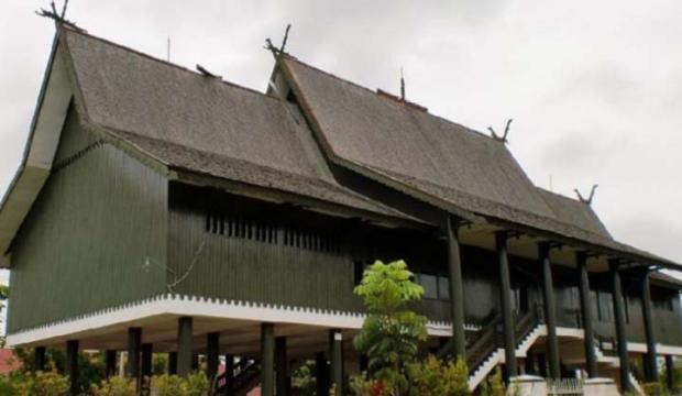 Wilmar Group Disidang oleh Dewan Adat Dayak karena Merusak Situs Budaya