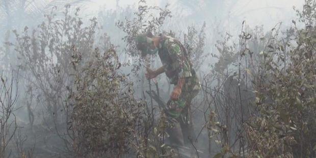 Miris, TNI Padamkan Lahan Terbakar dengan Kaki dan Alat Seadanya