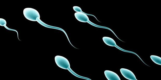 Duh, Sperma Lelaki Sehat Tinggi 165 cm dan Sarjana Bisa Ditukar dengan iPhone 6s