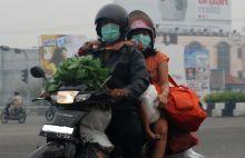 inilah-jenis-masker-yang-paling-tepat-digunakan-di-tengah-kabut-asap