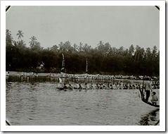 Sejarah Pacu Jalur Kuansing dan Kisah Perayaan Wajib di Hari Kelahiran Ratu Belanda Wihelmina