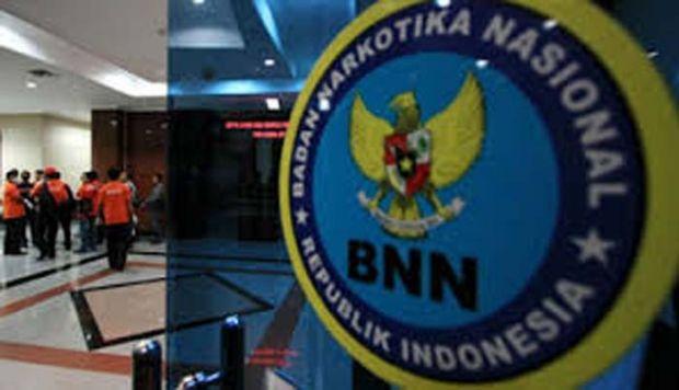 BNN: Mafia Narkotika 4 Negara Berburu Pasar di Indonesia