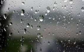 Ini Peluang yang Berpotensi Raup Keuntungan Besar di Musim Hujan