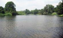 danau-bingkuang-di-kabupaten-kampar-objek-wisata-alternatif