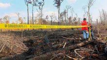 kompor-yang-ditinggal-karyawan-saat-masak-nasi-penyebab-terbakarnya-70-hektar-lahan-akasia-di
