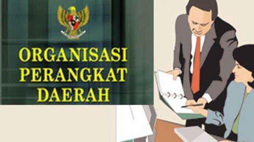 """Perubahan OPD, 163 Pejabat di Kabupaten Pelalawan Jadi """"Pengangguran"""""""