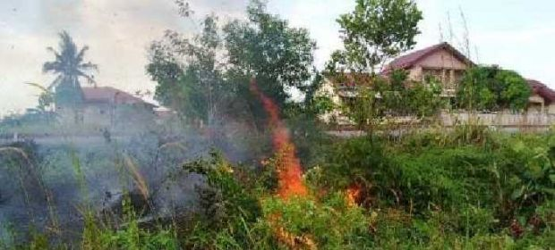 "Lahan di Bawah ""Power Line"" Milik Chevron Duri Jalan Rangau Terbakar, Api Masih Berkobar"