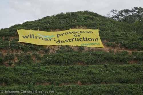 Amnesty International Ungkap Dugaan Perusahaan Wilmar Eksploitasi Tenaga Kerja Indonesia