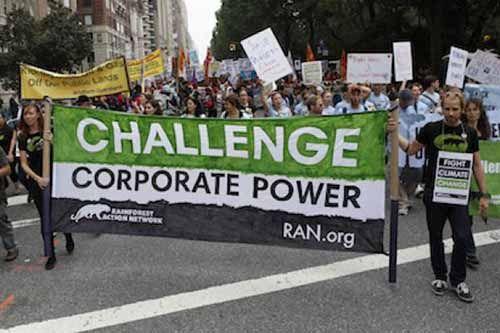 Wilmar, APP, dan Indofood Dituding Terlibat Skandal Lingkungan