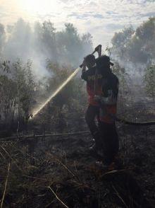aduuhh-kebakaran-hutan-dan-lahan-tak-kunjung-padam-di-bengkalis-masyarakat-berjaga-hingga-larut