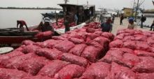 lagi-polair-riau-amankan-20-ton-bawang-merah-asal-malaysia-di-perairan-bengkalis