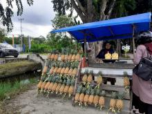 dilema-pedagang-nanas-madu-di-pekanbaru-berjualan-di-masa-pandemi-tetap-optimis-walau-tak-terlalu