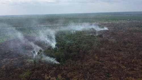 Posko Siaga Kebakaran Hutan di Riau Sudah Didirikan, SK-nya Masih dalam Penyusunan