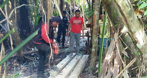 Tim Polres Pelalawan Temukan <i>Illegal Logging</i> di Hutan Konservasi