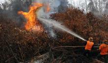 kebakaran-hutan-di-riau-belum-teratasi-api-masih-membara-di-3-kabupaten