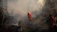 masuki-musim-kemarau-kebakaran-hutan-dan-lahan-membayangi-riau