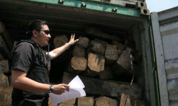 Diangkut dari Sumbar ke Sumut, Polisi Bengkalis Gagalkan Penyelundupan Kayu Antarprovinsi