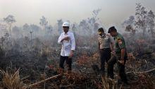 10-perusahaan-5-di-antaranya-di-riau-diduga-jadi-dalang-pembakaran-hutan