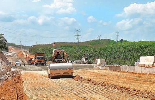 Pembangunan Terowongan Gajah di Tol Pekanbaru-Dumai Dirancang Gunakan Tanaman Hijau agar Menyerupai Habitat Asli