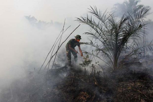 Ada Perbedaan Mencolok Data Luas Karhutla di Riau dengan yang Dimiliki Kementerian LHK, BPBD Beri Penjelasan