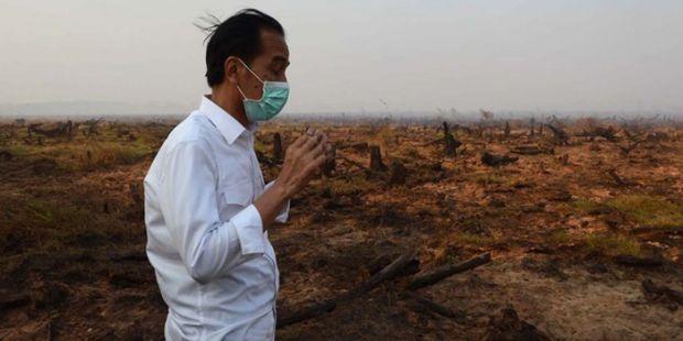 Terbang ke Sumatera, Jokowi: Ini Kita Mau ke Tempat-tempat yang Ada Asapnya