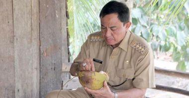 bupati-hm-wardan-janji-pemerintahannya-akan-fokus-perbaiki-kebun-kelapa-rakyat-inhil