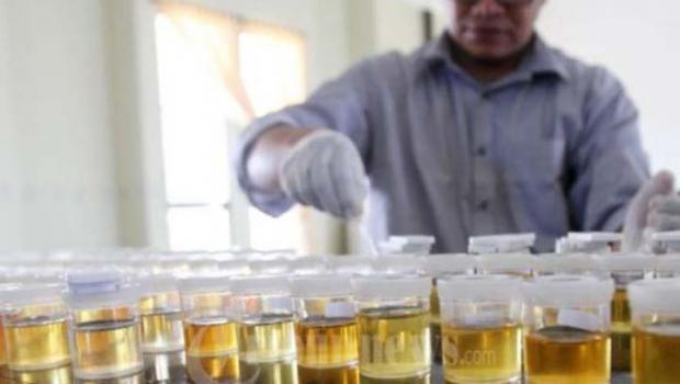 8 Tenaga Honorer Dispora Riau Positif Narkoba Bakal Dipecat secara Tidak Hormat