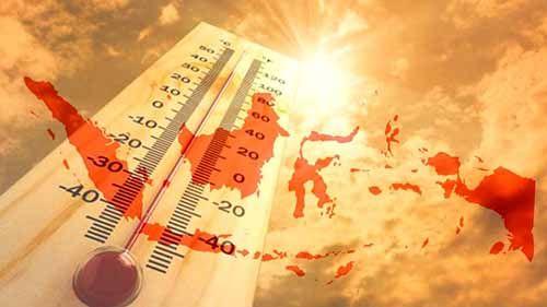 Tujuh Titik Panas Terdeteksi di Riau, Suhu Capai 34,5 Derajat Celcius