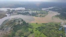 ribuan-hektar-sawah-terendam-banjir-petani-di-kuansing-gagal-panen