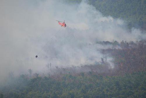 Helikopter dan Pesawat Tempur Dikerahkan Atasi Kebakaran Hutan di Berbagai Wilayah di Riau