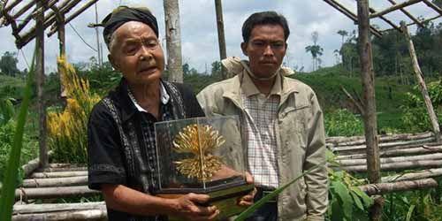 Pahlawan Penyelamat Lingkungan Riau Patih Laman Tutup Usia