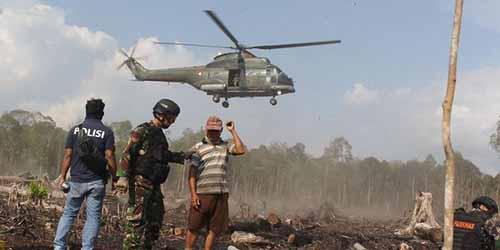 Satgas Kebakaran Hutan Riau Tangkap Pelaku Pembakaran di Kepulauan Meranti