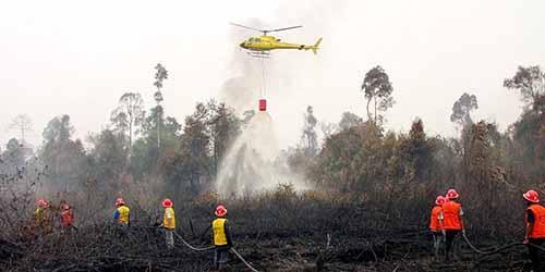 Bulan Juni Jadi Awal Musim Kemarau 2017, Waktunya Antisipasi Kebakaran Hutan dan Lahan