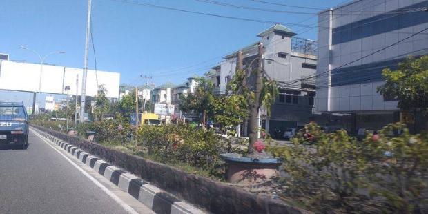 Akui Sudah Berdamai, Dinas PUPR Pekanbaru belum Cabut Laporan Polisi Kasus Penebangan 83 Pohon Pelindung