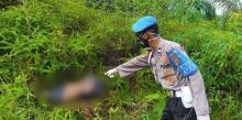 mayat-wanita-tanpa-kepala-dan-kaki-ditemukan-di-tepi-jalan-desa-dundangan-pelalawan