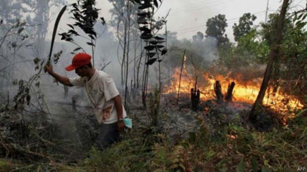 DPRD Riau Masih Perdebatkan soal Boleh Tidaknya Bakar Lahan kalau Hanya Seluas 2 Hektar