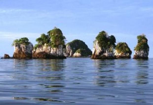 Bakar Tongkang Usai, Saatnya Mengintip Surga Penyu ke Pulau Jemur