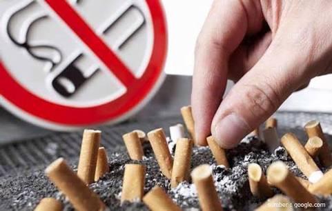 Terima Anugerah Paramesti, Pemkab Siak Akan Kawal Kawasan tanpa Rokok