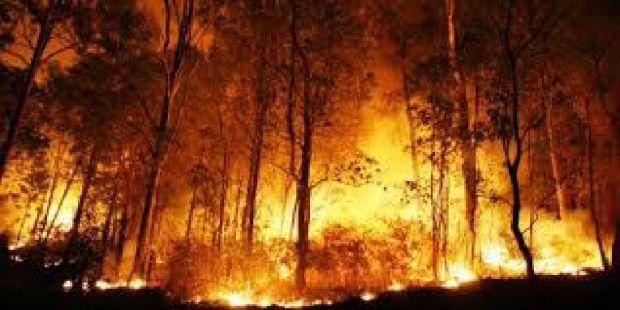 BNPB: Pembakaran Terus Terjadi, Hotspot Terus Bertambah, Hanya Hujan Lebat yang Bisa Memadamkan Semua