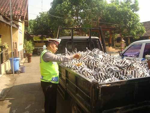 Ratusan Paket Sembako Diduga Terkait Pemilihan Bupati Kampar Ditemukan di Sebuah Rumah Kosong di Desa Salo