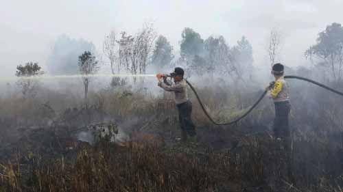 Lahan Kelompok Tani PT SSS di Pangkalanterap Pelalawan Terbakar