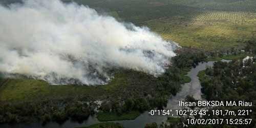 Patroli Udara TNI AU Kembali Temukan Lahan Gambut yang Terbakar di Kecamatan Kerumutan Pelalawan