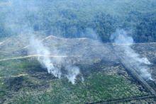 bakar-ribuan-hektar-hutan-ma-denda-pt-kallista-alam-rp366-miliar-menyusul-pt-national-sago-prima-di