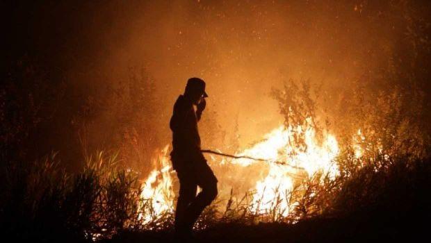 Dua Perusahaan Milik Malaysia dan Tiongkok Jadi Tersangka Pembakaran Lahan