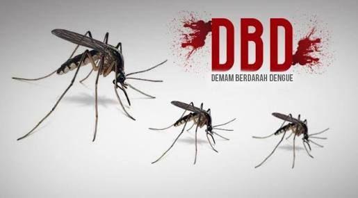 Sepanjang Bulan Januari 2017, Penderita DBD di Kabupaten Siak Sebanyak 18 Orang
